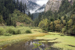 Beautiful valley. With river, grassland, trees and clouds Royalty Free Stock Photos