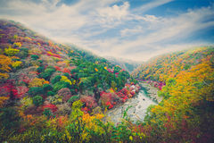 Beautiful valley with seasonal colorful trees and blue sky lands Stock Photography
