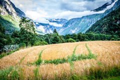 Free Beautiful Valley, Troll Route, Norway Stock Image - 40694751