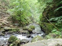 Beautiful valley of wild Doubrava river in Bohemian highlands in checz republic. Beautiful forest and rocks in valley of wild Doubrava river in Bohemian royalty free stock image