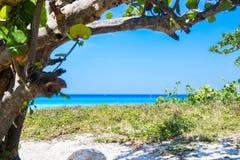 Beautiful Varadero beach. Beautiful sun, Varadero beach, Cuba Stock Images