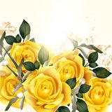 Beautiful vector background with beige roses Stock Images