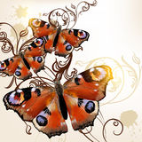 Beautiful vector  background with butterflies Stock Photo