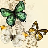 Beautiful vector background with butterflies in vintage style Royalty Free Stock Photos