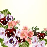 Beautiful vector background with detailed  flowers Stock Photos