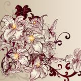 Beautiful vector background with lily in vintage style Stock Photos