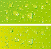 Beautiful vector decoration water drops Royalty Free Stock Photography