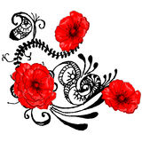 Beautiful vector floral design. Beautiful red poppy vector floral design Royalty Free Stock Images