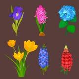 Beautiful vector flower bouquet design decoration nature design floral flower drawing leaf blossom botanical spring Stock Photo