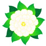 Beautiful vector flower with sheet Royalty Free Stock Image