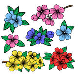 Beautiful Vector flowers set. Colorful floral collection with leaves and flowers. Stock Photo