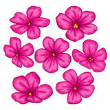 Beautiful Vector flowers set. Colorful floral collection with pink flowers. Stock Photo
