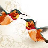 Beautiful vector  humming birds  with ornament Stock Photos