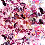 Beautiful vector pattern with orchid flowers hummingbirds Stock Photography
