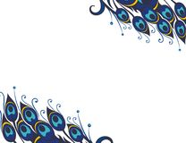 Beautiful vector peacock feathers background Stock Photo