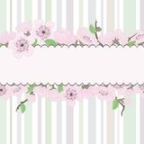 Beautiful vector sakura backgrond Royalty Free Stock Photo