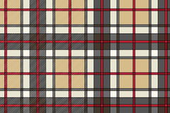 Beautiful vector scottish cloth Stock Photos