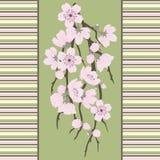Beautiful vector seamless pattern with sakura stock illustration
