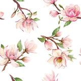 Watercolor magnolia floral vector pattern Royalty Free Stock Images