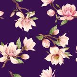Watercolor magnolia floral vector pattern Stock Images