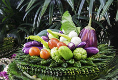 Beautiful vegetable. With green background Royalty Free Stock Photography