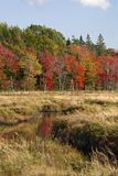 Fall at the Meadow in New Ross Nova Scotia. stock photo