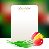 Beautiful vertical rectangular greating card with spring flowers Royalty Free Stock Photo