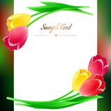 Beautiful vertical rectangular greating poster with spring flowe Stock Photography