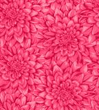 Beautiful vertical seamless background with pink dahlia. Royalty Free Stock Photos