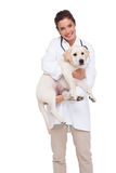 Beautiful veterinarian with a cute dog in her arms Royalty Free Stock Photography