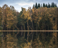 Beautiful vibrant Autumn woodland reflecions in calm lake waters Royalty Free Stock Photography