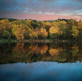 Beautiful vibrant Autumn woodland reflecions in calm lake waters Royalty Free Stock Images