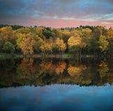 Beautiful vibrant Autumn woodland reflecions in calm lake waters. Stunning vibrant Autumn woodland reflected in still lake water landscape Royalty Free Stock Images