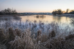 Beautiful vibrant English countryside lake image with frost and Royalty Free Stock Image