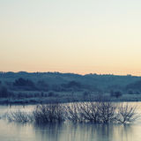 Beautiful vibrant English countryside lake image with frost and Royalty Free Stock Photography
