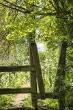 Beautiful vibrant English countryside landscape in idyllic sunsh. Beautiful English countryside landscape in idyllic sunshine conditions for hiking Stock Photos