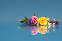 Beautiful, vibrant flowers against bright blue Royalty Free Stock Photos