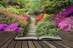 Beautiful vibrant landscape image of footpath border by Azalea f
