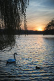 Beautiful vibrant Spring sunrise over calm lake in English count Royalty Free Stock Photo