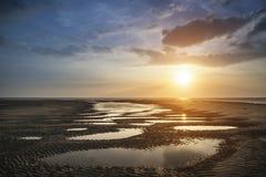 Beautiful vibrant Summer sunset over golden beach landscape Stock Photos