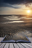 Beautiful vibrant Summer sunset over golden beach landscape conc Stock Photos