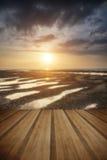 Beautiful vibrant Summer sunset over golden beach landscape with Stock Photos