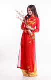 Beautiful Vietnamese woman with red ao dai holding cherry blossom Stock Images