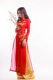 Beautiful Vietnamese woman with red ao dai holding cherry blossom Stock Photos