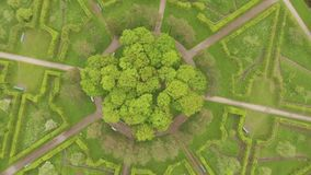Beautiful view from the air to the geometry of the landscape in Catherine`s Park stock video footage