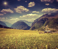 Beautiful view of alpine meadows in the mountains Stock Photos