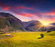 Beautiful view of alpine meadows Stock Photography