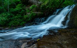 Summer time at Alsea Falls royalty free stock photography