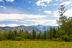 Beautiful view in the Altai Mountains, Russia Royalty Free Stock Photo