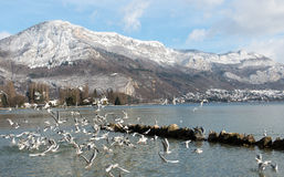 Beautiful view of the Annecy Lake in French Alps. Annecy. Haute Savoie. France. Beautiful view of the Annecy Lake in French Alps stock image